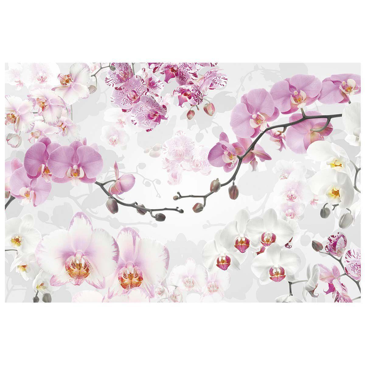 fototapete orchideen einfach geschenke. Black Bedroom Furniture Sets. Home Design Ideas