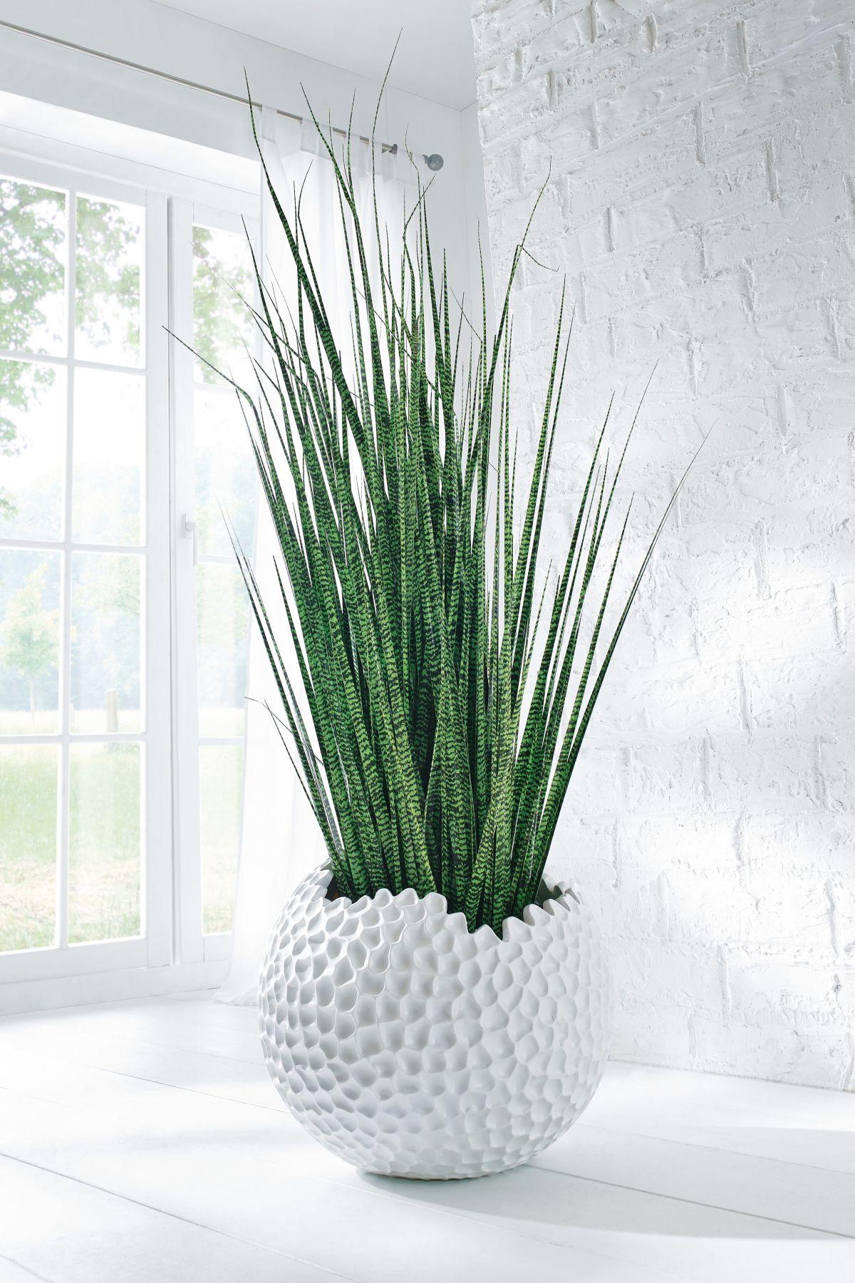 bertopf globe wabenstruktur polyresin durchmesser ca. Black Bedroom Furniture Sets. Home Design Ideas